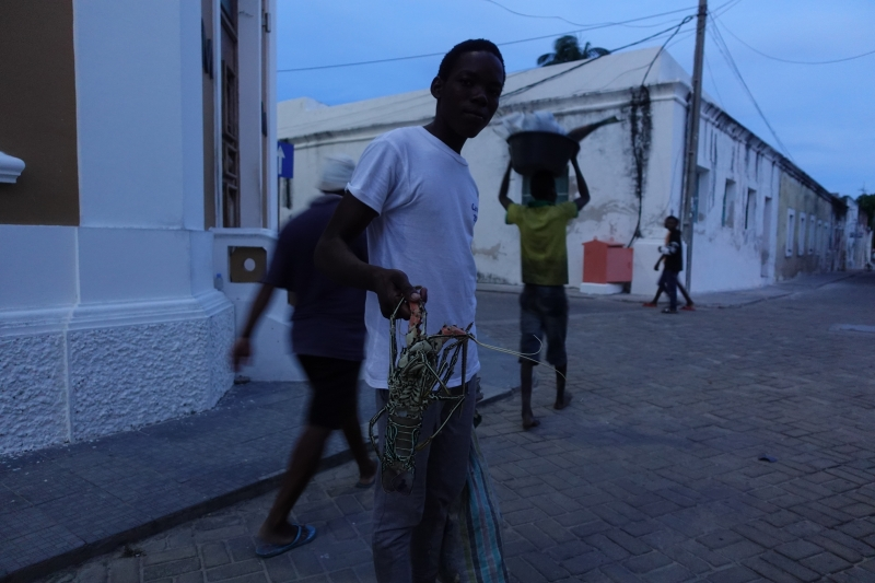 モザンビーク島のロブスター
